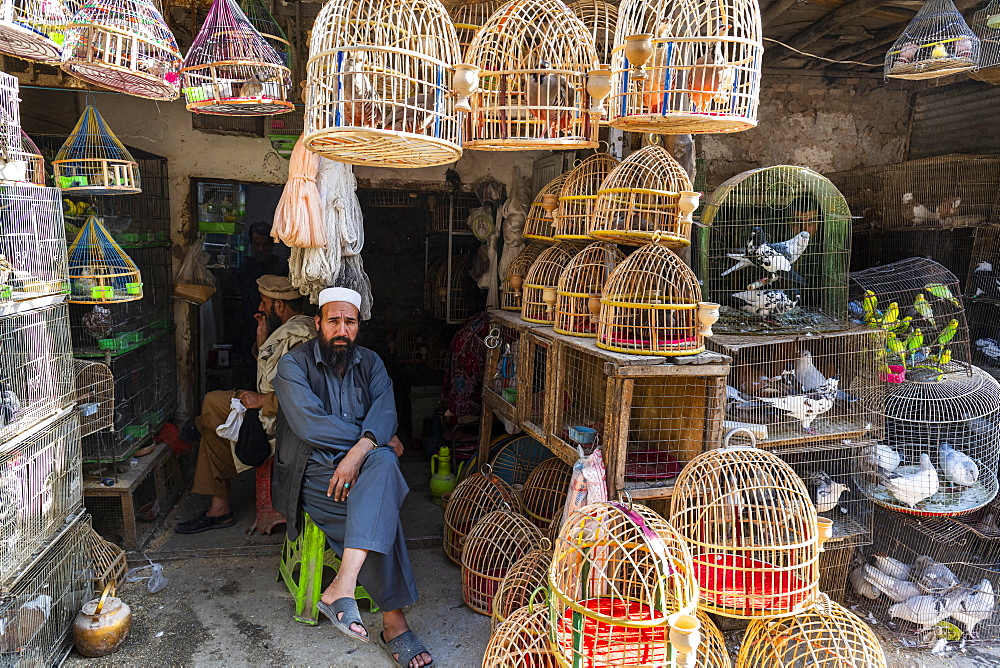 Birds for sale, Bird Street, Kabul, Afghanistan, Asia