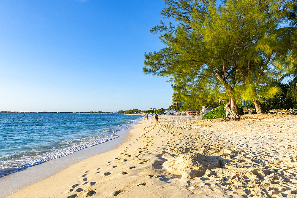Governors Beach part of seven mile beach, Grand Cayman, Cayman islands - 1184-3538
