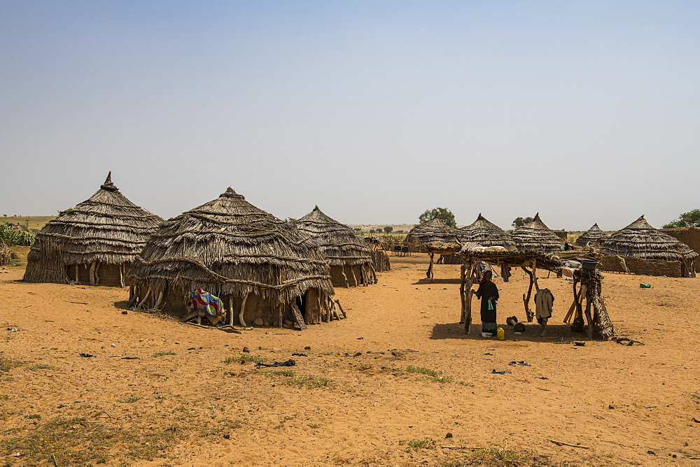 Traditional Hausa village, southern Niger, West Africa, Africa