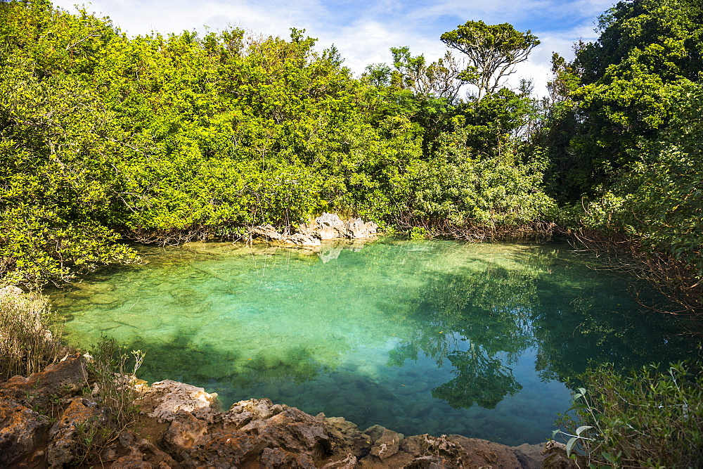 Sinkhole in the blue hole park, Bermuda, North America