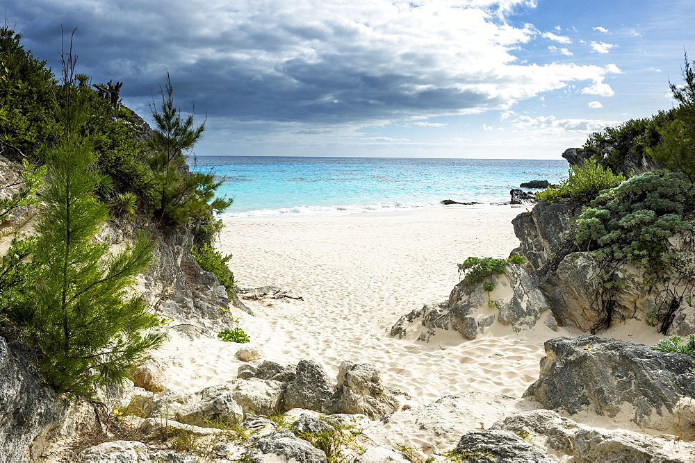 White sand beach in Chaplin's bay, Bermuda, North America