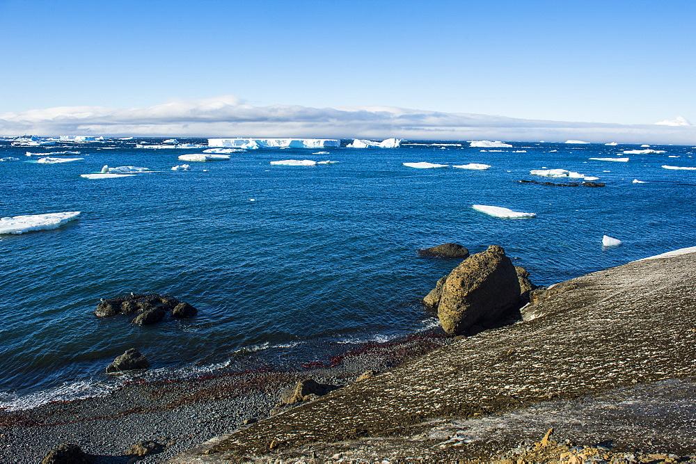 Huge icebergs on Tabarin Peninsula, Antarctica, Polar Regions