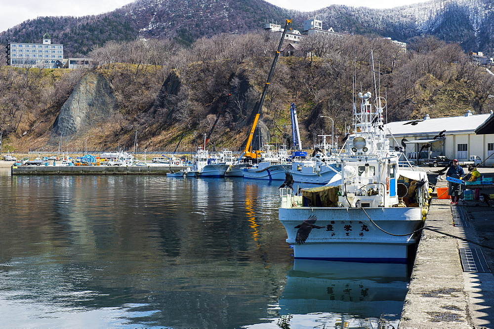 Boat harbour for vistitor boats in Shiretoko National Park, UNESCO World Heritage Site, Hokkaido, Japan, Asia