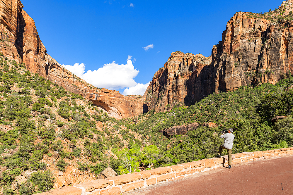 Taking a photo of Canyon overlook, Zion National Park, Utah, United States of America, North America