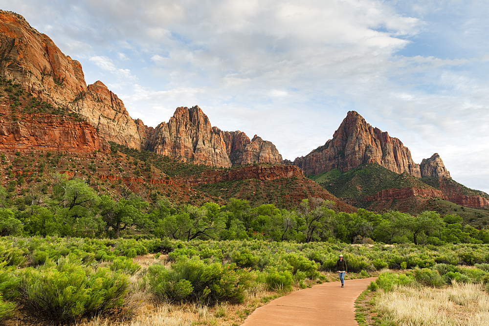 The Watchman, Zion National Park, Utah, United States of America, North America
