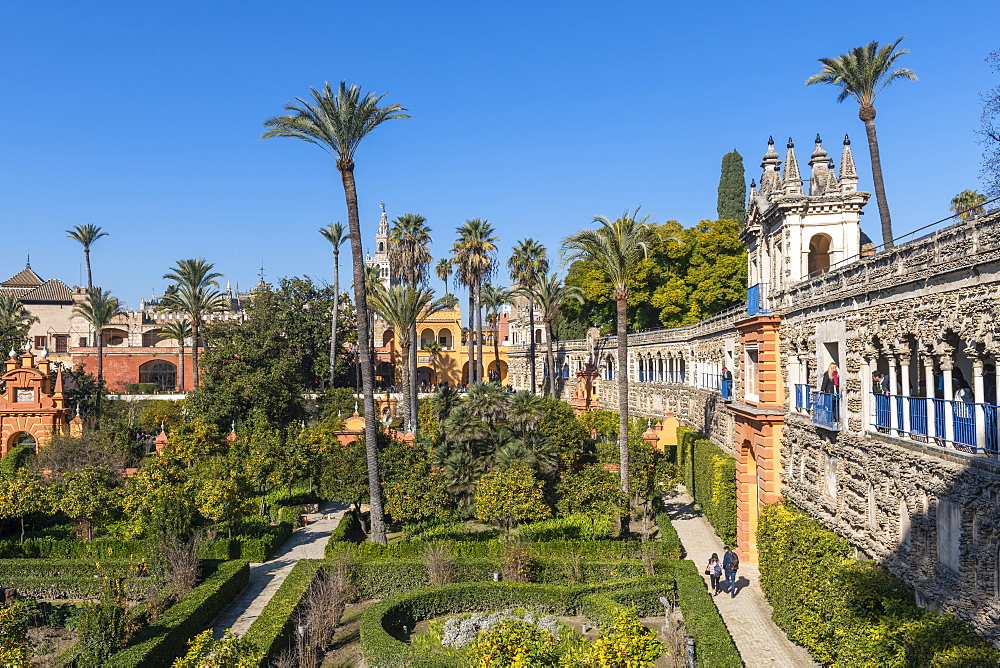 Alcazar Gardens, UNESCO World Heritage Site, Seville, Andalusia, Spain, Europe
