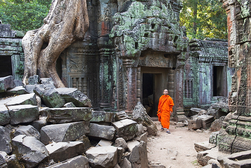 Monk walking through Ta Prohm temple, UNESCO World Heritage Site, Angkor, Siem Reap, Cambodia, Indochina, Southeast Asia, Asia
