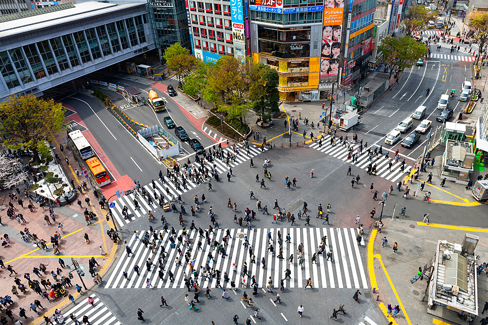 Shinjuku crossing - 1186-788