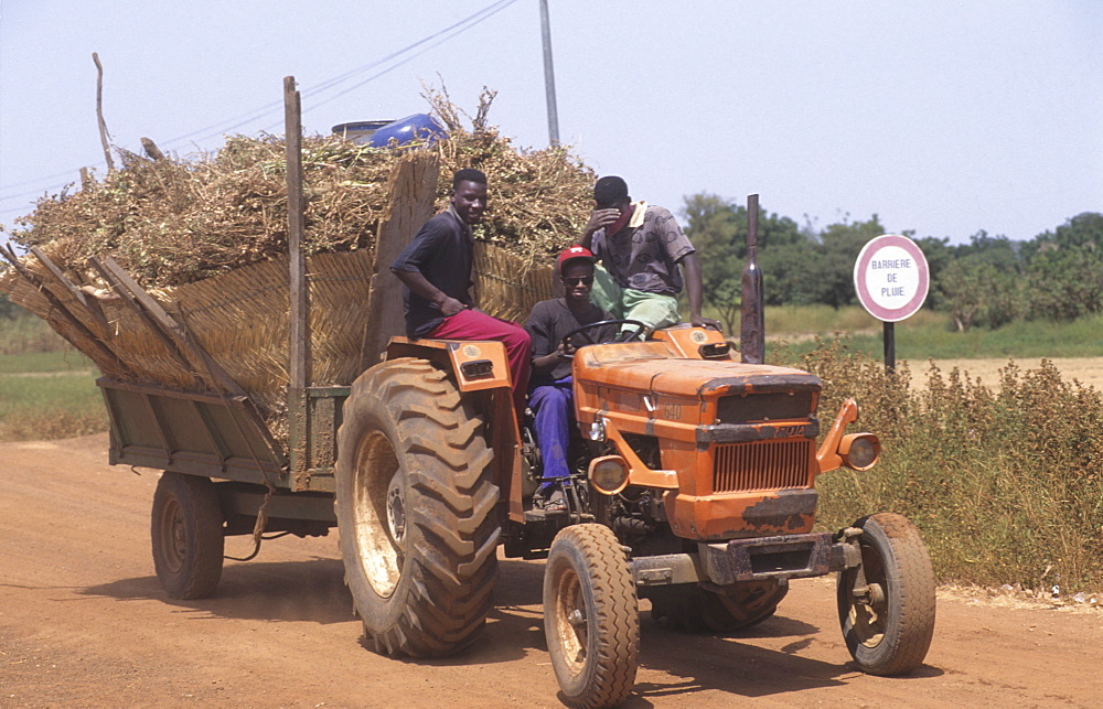 Agriculture, burkina faso. Kaya village. Bringing home the harvest. Tractor