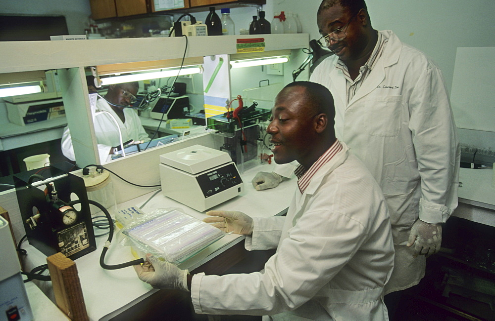 Onchoceriasis, ivory coast. Bouake. Who river blindness programme, ocp research lab. Examining black flies, the vector for river blindness.