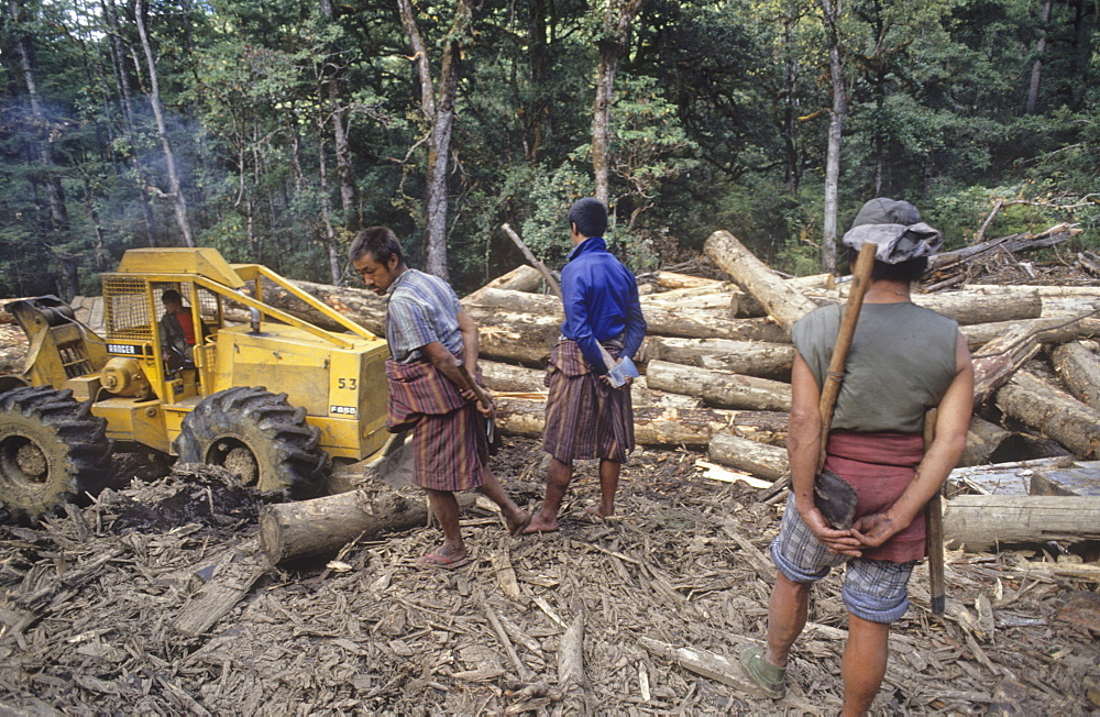 Logging, bhutan. The vast temperate forests are one of bhutans major natural resources. About 60% of the country is covered by forest, much of it untouched. Logging is so carefully controlled, that the timber industry cannot utilize its sawmills to full capacity
