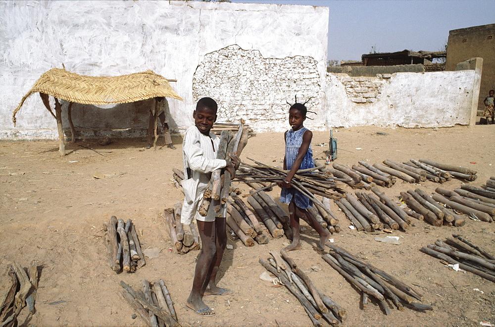 Burkina faso, fuelwood market. Ouagadougou