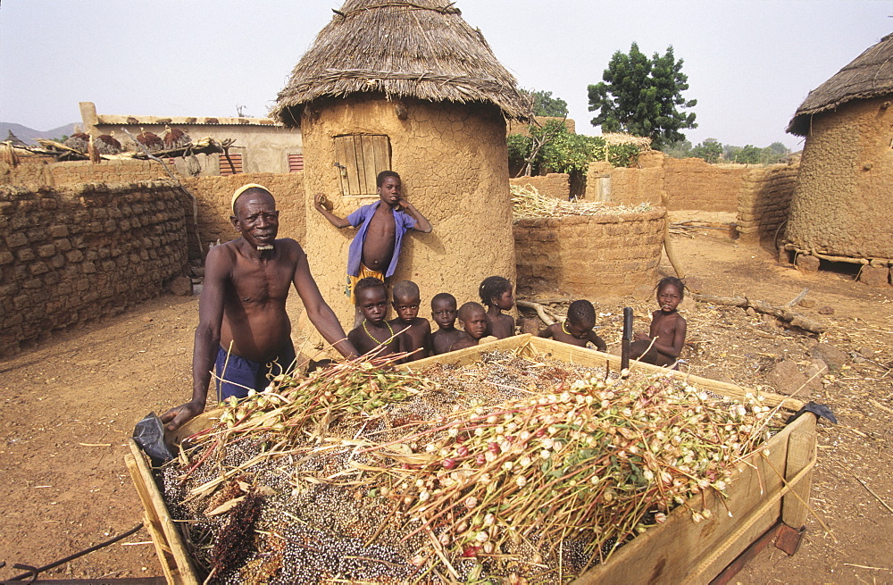 Agriculture, burkina faso. Silmiougou village. Farmer with his children and his grain harvest in his homestead