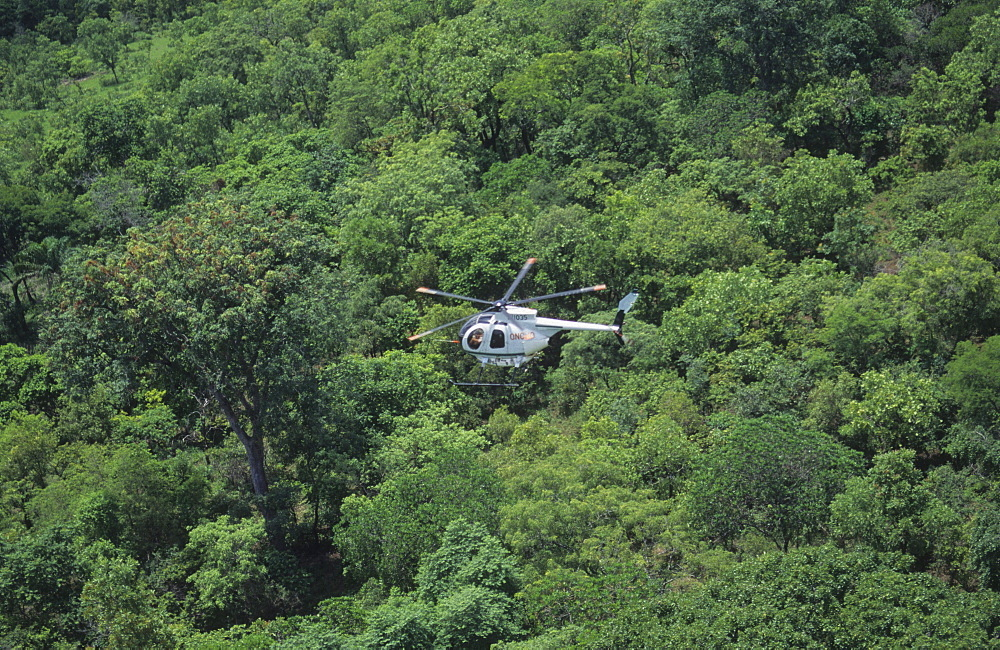 Onchoceriasis, ivory coast. Ngolodougou river. Helicopter spraying larvicide to kill blackfly larva, the vector for river blindness or onchoceriasis.