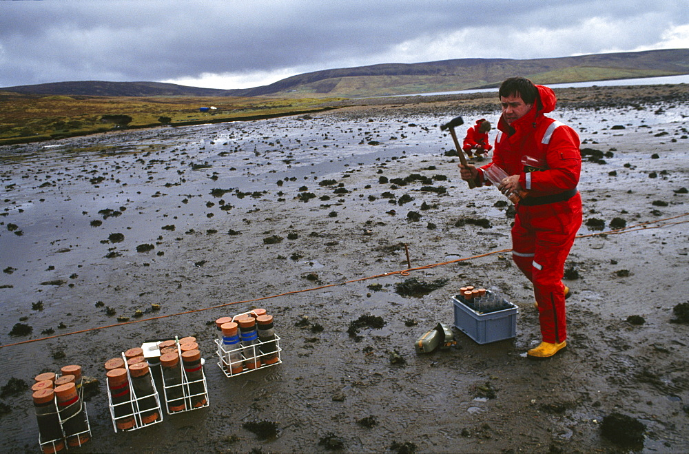 Shetland islands, oil disaster. Government scientist monitoring the long-term affects of the oil spill by taking samples of sand for analysis. On 5th january 1993, the oil tanker the braer ran aground in the shetland islands spilling 85,000 tonnes of light crude oil