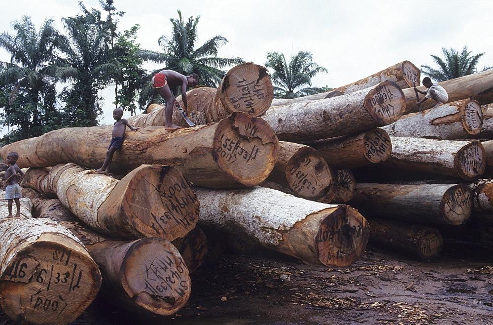Logging, nigeria