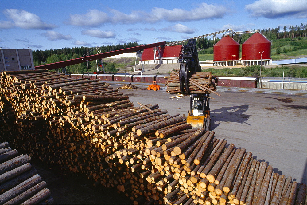 Paper production, finland. Jamsawkoski. United paper mills. Forests in finland are sustainably managed. Natural regeneration of forests is supplemented by planting three tree seedlings to replace each tree logged