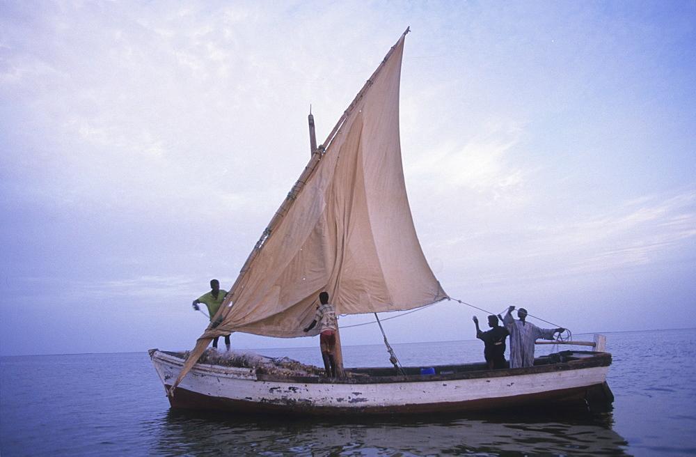 Fishing, mauritania. Banc darguin national park. Traditional fishing boats