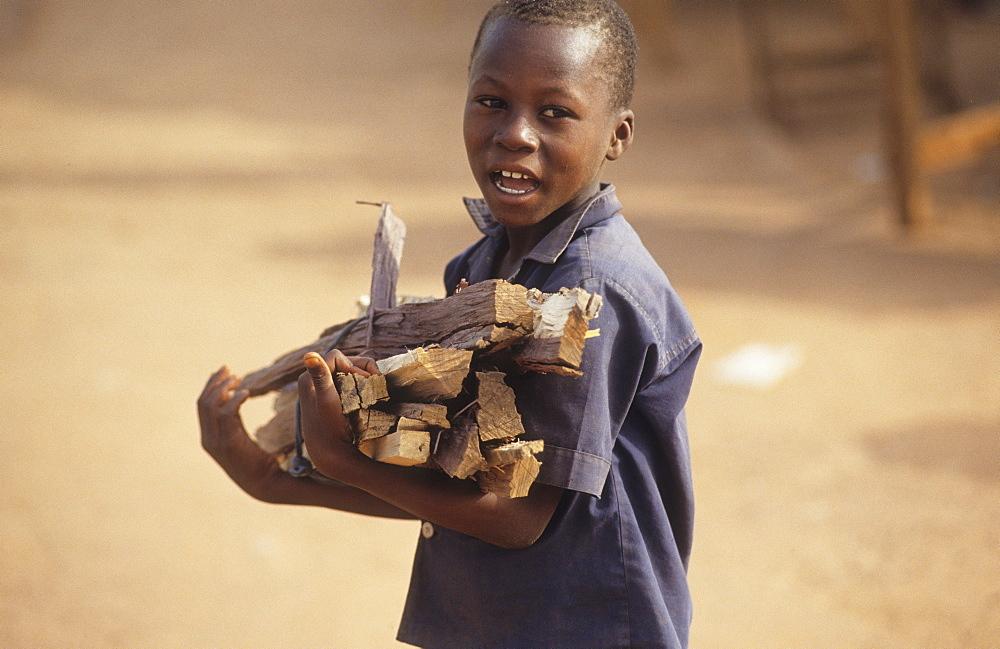Fuelwood-daloa town, ivory coast. Child with fuelwood