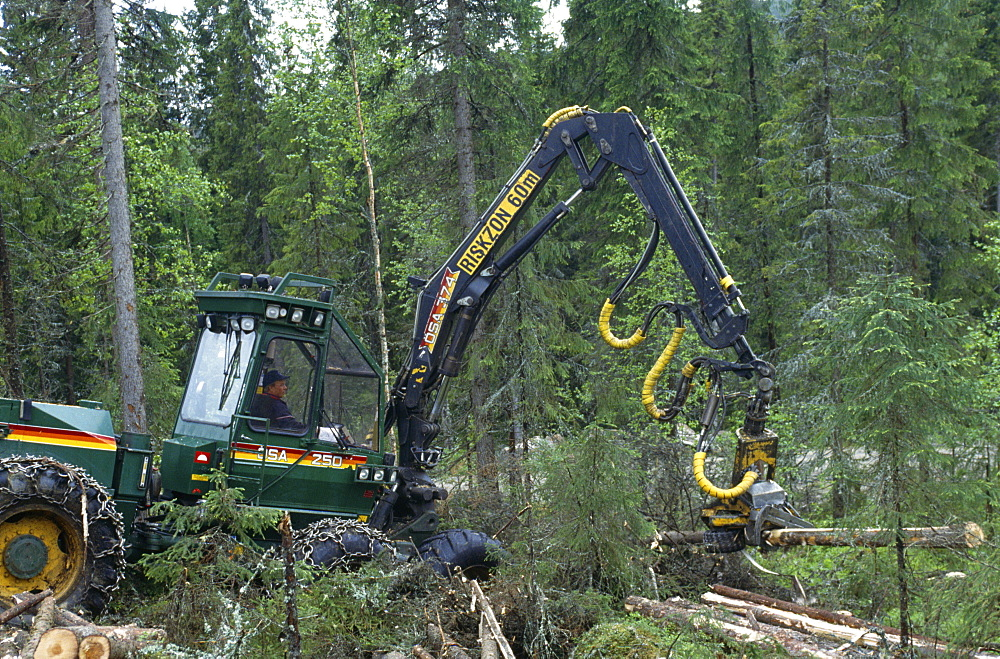 Scandinavian forestry, sweden. Vicinity sundsvall. Machines are used to log trees and the operators are trained to work as sensitively as . They preserve the older parts of the forest and create wildlife refuges