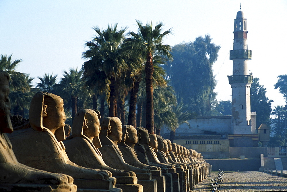 Ancient temples, egypt. Luxor