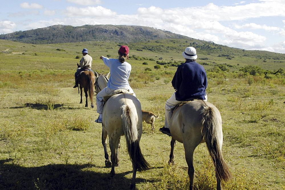 Uruguay. Ecotourism in a ranch in maldonado.