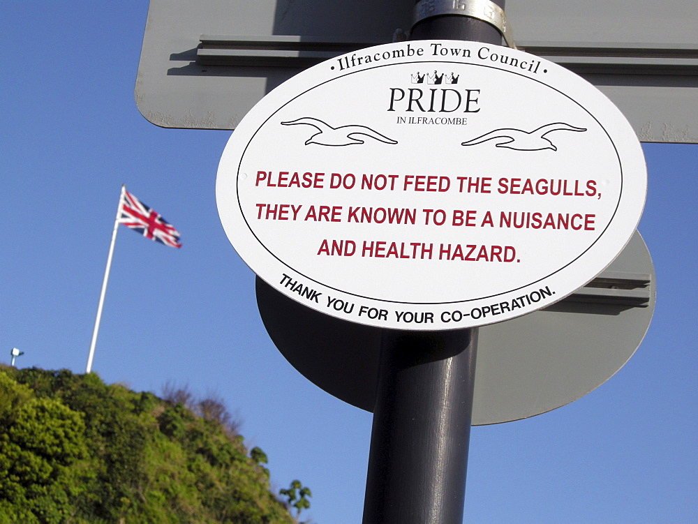 Uk signs in the harbour at ilfracombe, devon