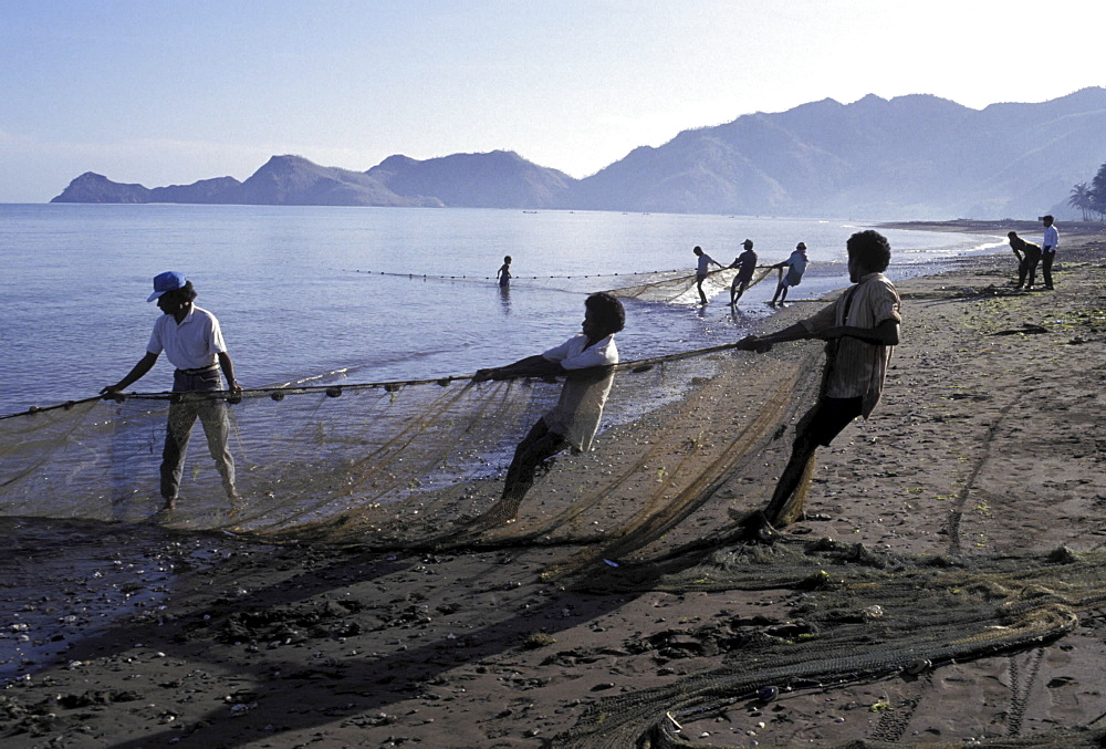 Fishermen, east timor. Areia branca beach, near dili. Fisherman hauling in nets