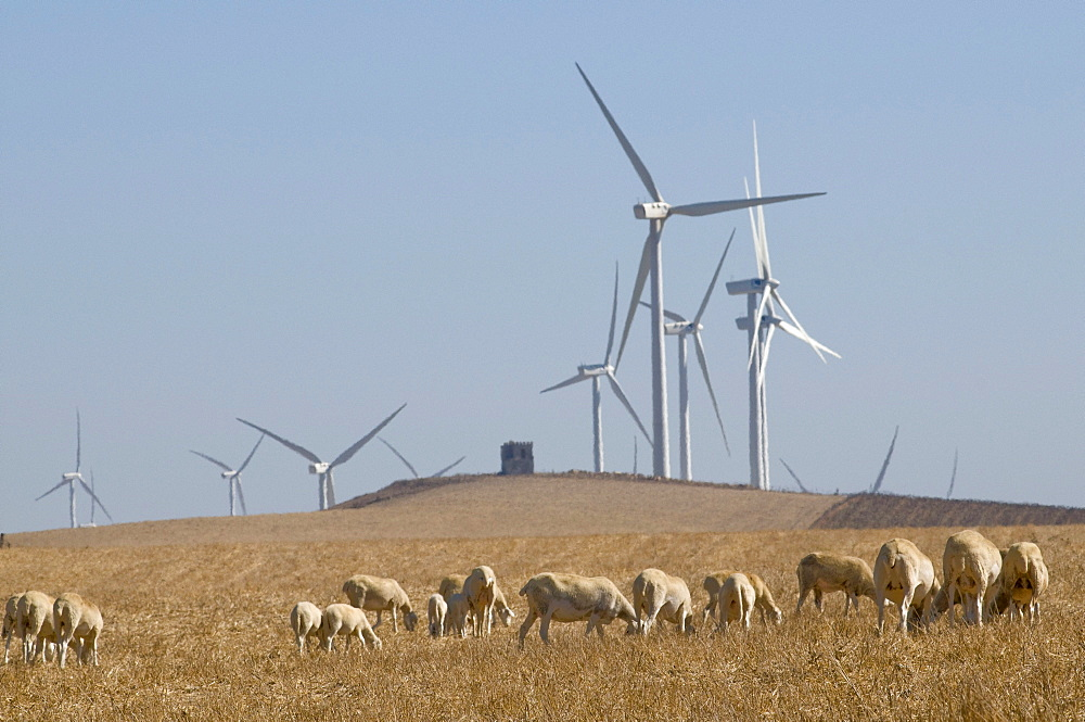Spain. Wind turbines in rural areas in andalucia