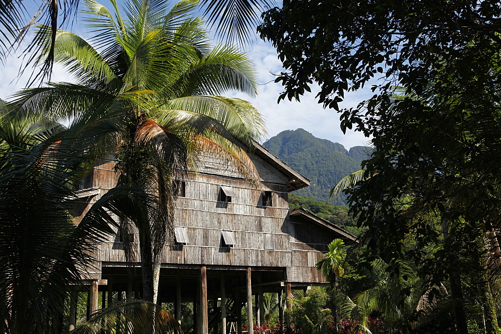 Traditional native Iban longhouse in Borneo, Malaysia, Southeast Asia, Asia