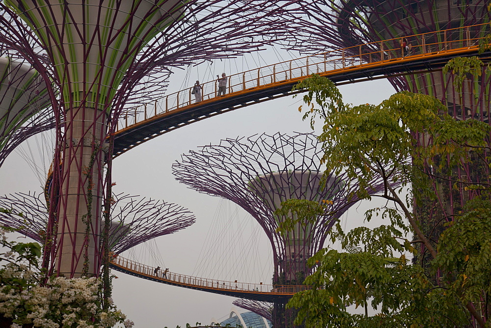 Tourists visit the Sky Walk at Gardens by the Bay in Singapore, Southeast Asia, Asia