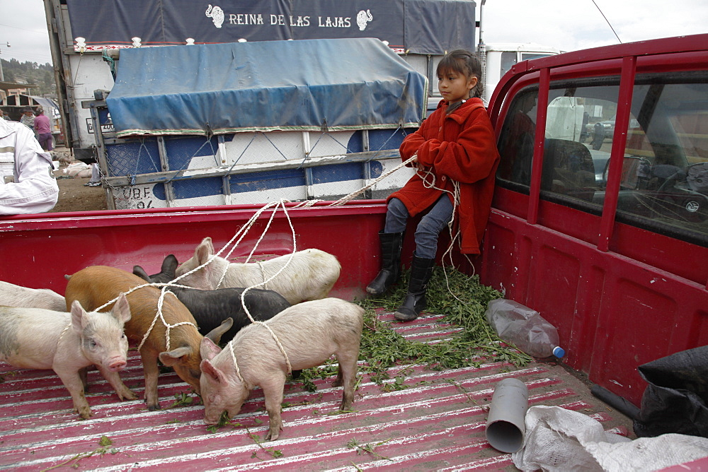 Market day in the town of Riobamba in the highlands of Ecuador, South America