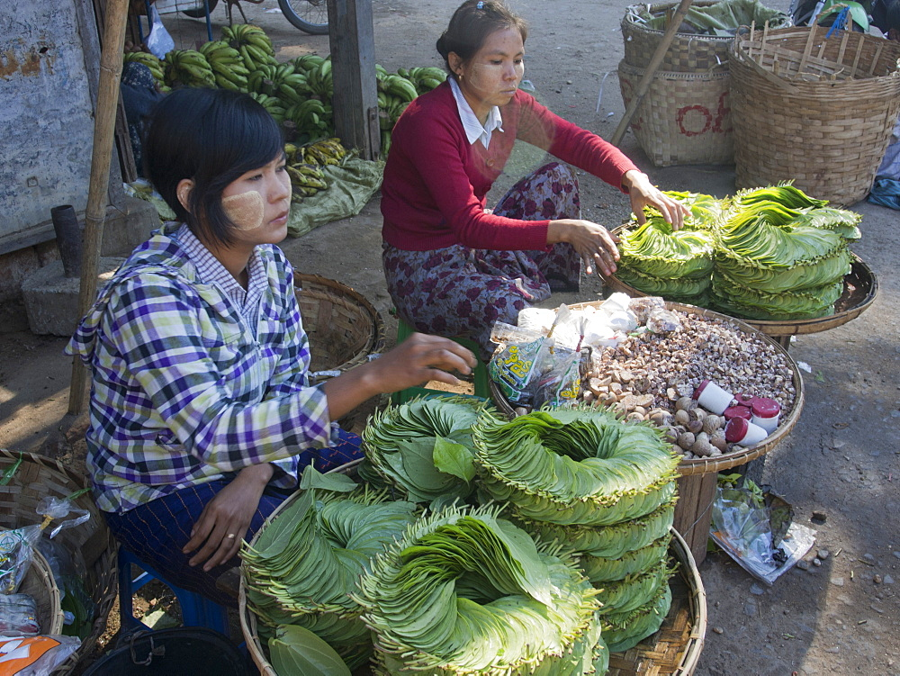 Betel leaves for sale to make paan, Mandalay, Myanmar (Burma), Asia