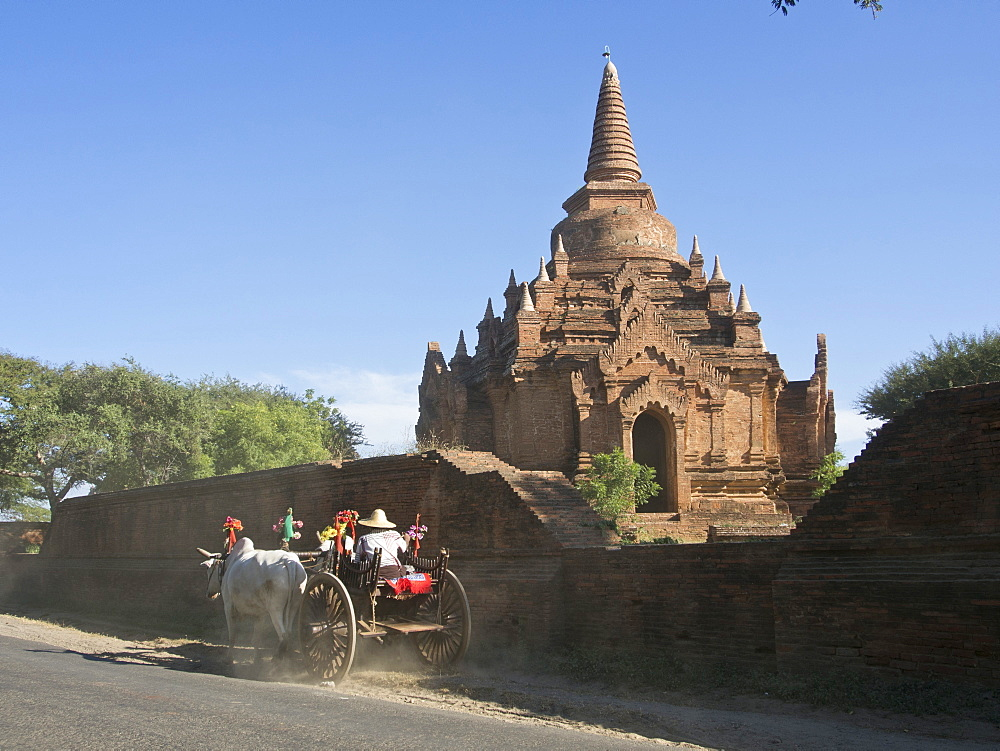 Horse and cart by Buddhist temples of Bagan, Myanmar (Burma), Asia
