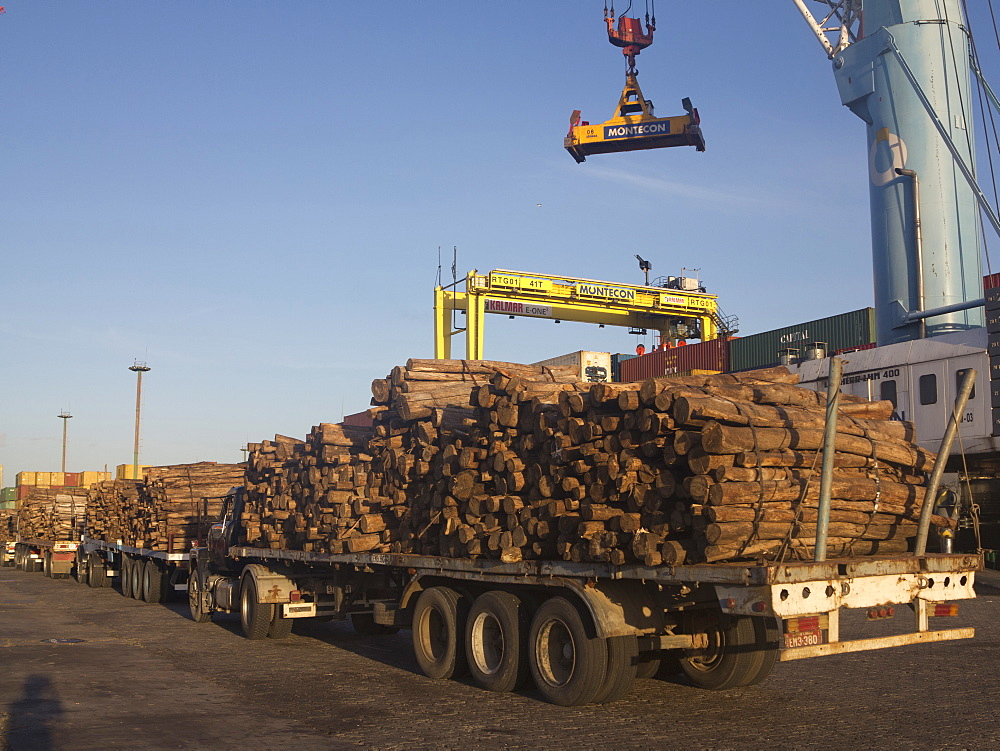 Timber loaded for export at the harbour in Montevideo, Uruguay, South America - 1188-830
