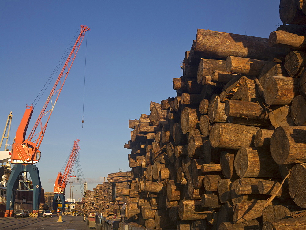 Timber loaded for export at the harbour in Montevideo, Uruguay, South America