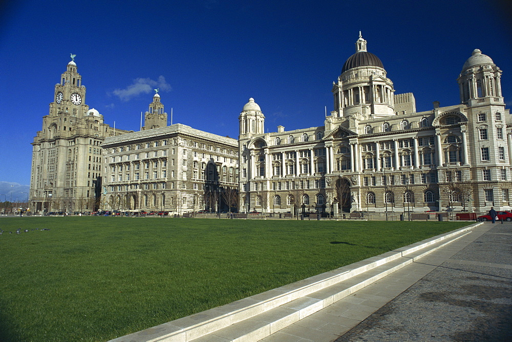 Liver Building and Mersey Docks and Harbour Board Building, Pier Head, Liverpool, Merseyside, England, United Kingdom, Europe - 119-1437