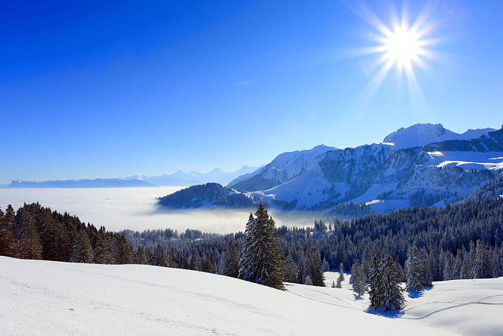Schweizer Alpen und Voralpen, Chrumfadeflue, - 2079 m, Gurnigel, Schweiz