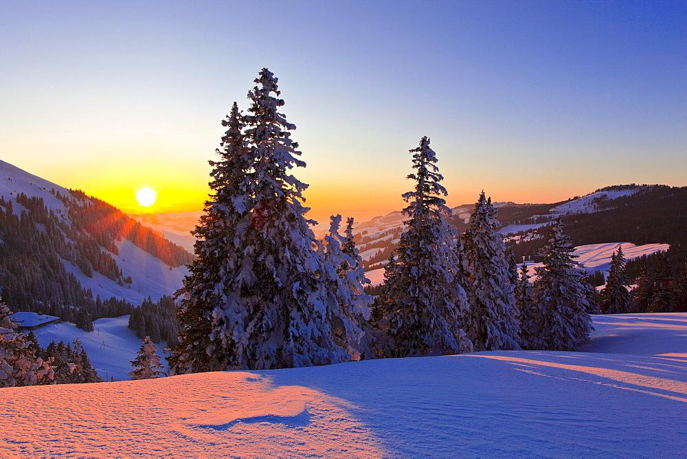 Schweizer Voralpen, Berner Mittelland, Gurnigel, Schweiz
