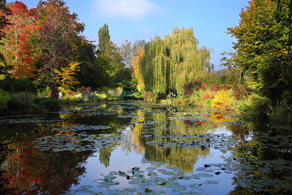 Claude Monet's water garden in October, Giverny, Normandy, France, Europe - 1191-47