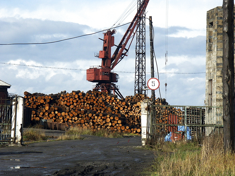 Russia - logs for export. Alexandrovsk, sakhalin island, russian far east