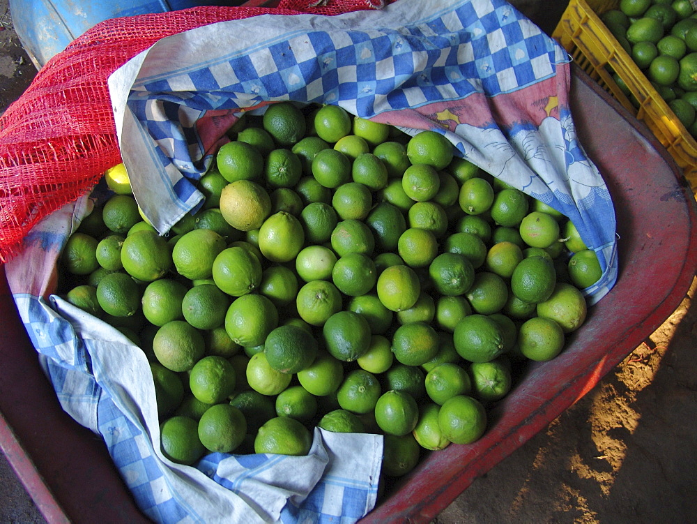 El salvador a basket of fresh limes, san francsisco javier