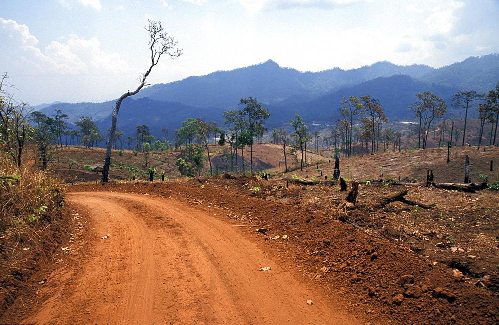 Thailand road to lahu tribal village, nasiri, near chiang mai - 1194-1029