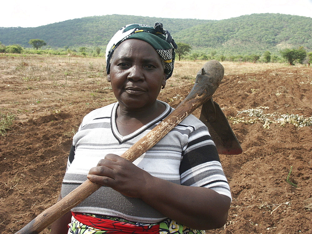 Zambia rita hamusokwe (58), farmer of chikwela village, chongwe, holding a hoe for cultivating her field