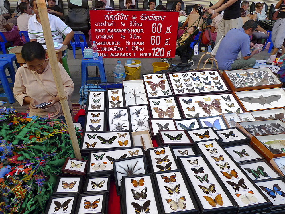 THAILAND Chiang Mai. Stall selling insects and spiders in glass cases. Photo by Sean Sprague