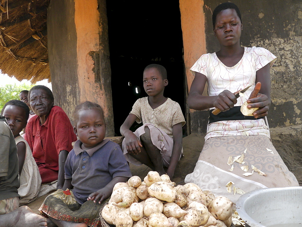 UGANDA The work of Comboni Samaritans, Gulu. Visiting a child headed family. Aromorach Sharon is the oldest girl and looks after her 6 younger siblings and her elederly grandmother. Her parents died of AIDS. Aged 14, she is a pupil of Obinya primary school. Sharon preparing a family meal by peeling sweet potatoes. PHOTO by Sean Sprague