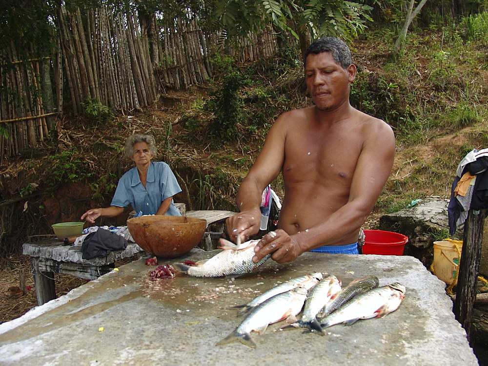 Colombia fisherman cleaning fish beside the rio magdalena, barrancabermeja