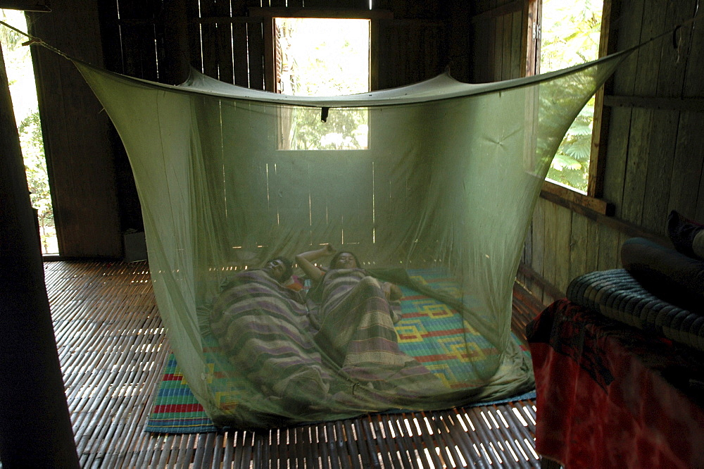 Cambodia couple sleeping in a mosquito net, toul village, kampong cham