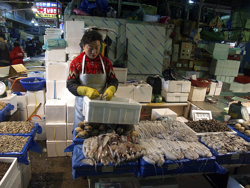 Korea - fish & squid on sale at karakan wholesale food market, seoul