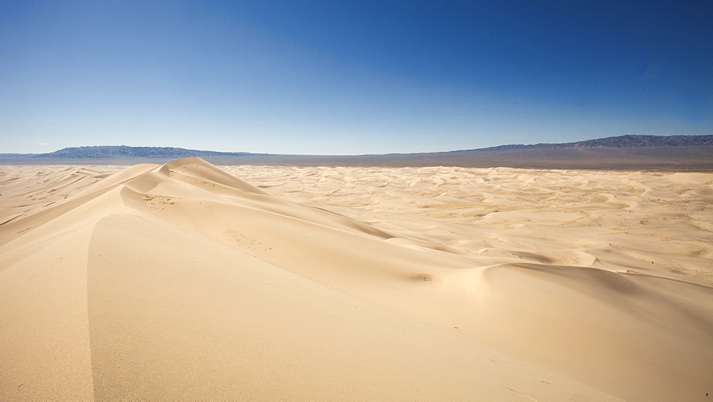 Khongoryn Els Sand dunes in the Gobi Gurvansaikhan National Park in Mongolia, Central Asia, Asia